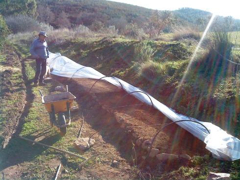 Finalizada la siembra de cebollas