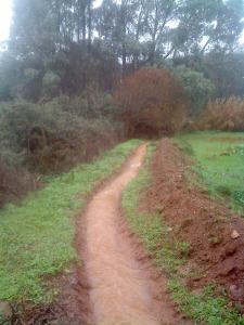 Zanja tras las lluvias de invierno